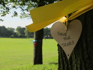 "A ribbon bearing a cardboard heart saying ""Save the trees"" on the Little Moor"