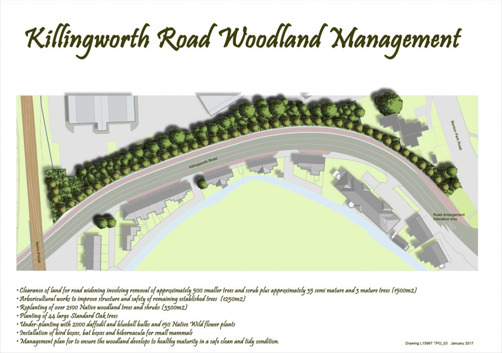 Diagram of Killingworth road showing proposed re-planting schemes.